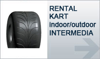 RENTAL KART (Indoor / Outdoor)